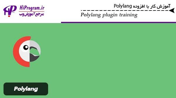 آموزش کار با افزونه Polylang